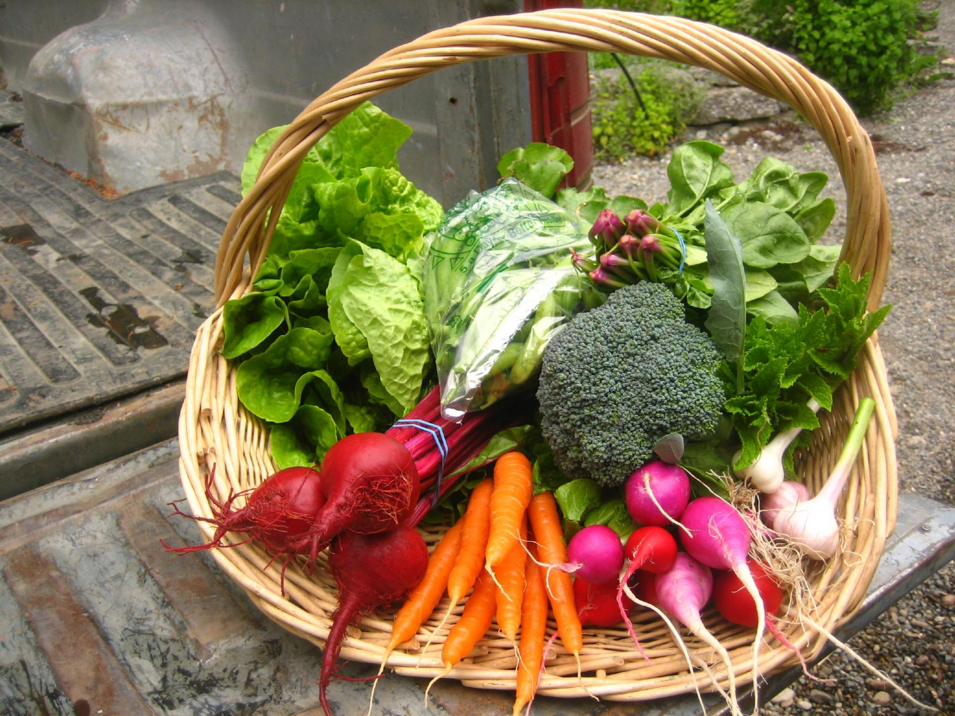 image basket vegetables
